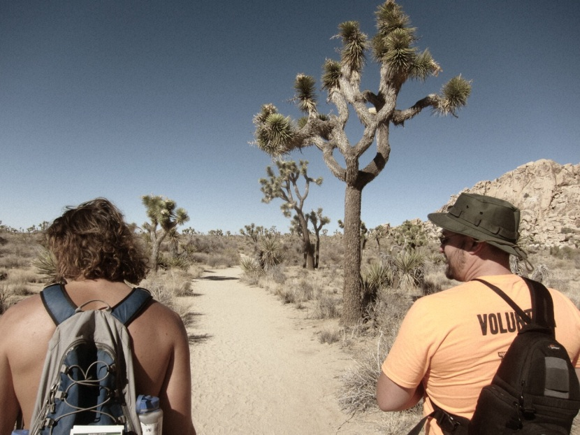 The Wonderland of Rocks hike to Willow Hole is a great easy day hike in Joshua Tree.